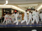 A Judo Szakosztály Műhelytámogatásban rézesült.